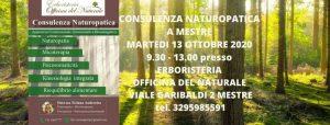 Consulenza di Naturopatia a Mestre Erboristeria Officina del Naturale @ Erboristeria Officina del Naturale Mestre | Mestre | Italy